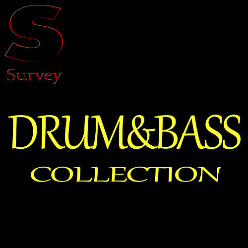 Drum&Bass Collection de Various