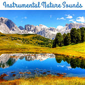 Instrumental Nature Sounds – Nature Healing Touch, Easy Listening, Peaceful Waves, Stress Relief, Inner Calmness de Nature Sound Collection