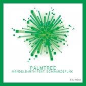 Palmtree (Schwarz & Funk Remix) by Mandelbarth