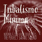 Tribalismo Minimo, Vol. 3 (Mixed by DJ Franco Capuano) by Various Artists
