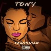 Tranquilo by Tony