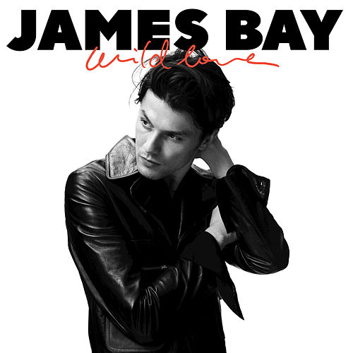 Wild Love by James Bay