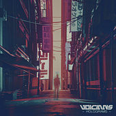 Holograms by Voicians