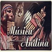Música Andina (Folclórica) by Various Artists