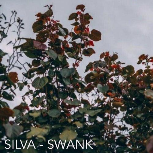 Swank by Silva