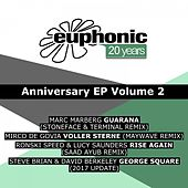 20 Years Euphonic, Vol. 2 von Various Artists