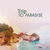 Trip to Paradise – Asian Meditation, Hatha Yoga, Chakra, Soft Mindfulness, Inner Zen, Peaceful Music by Reiki