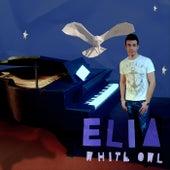 White Owl de Elia