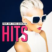 Top of the Charts Hits by Various Artists