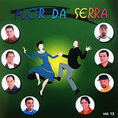 Os Reis do Arrasta Pé, Vol. 13 de Flor Da Serra