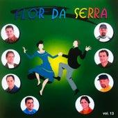 Os Reis do Arrasta Pé, Vol. 13 de Flor Da Serra
