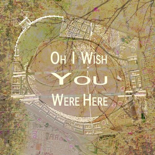 Oh I Wish You Were Here by Ganga (Hindi)