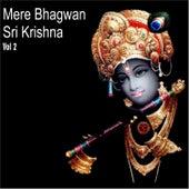 Mere Bhagwan Sri Krishna, Vol. 2 by Various Artists