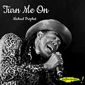 Turn Me On by Michael Prophet