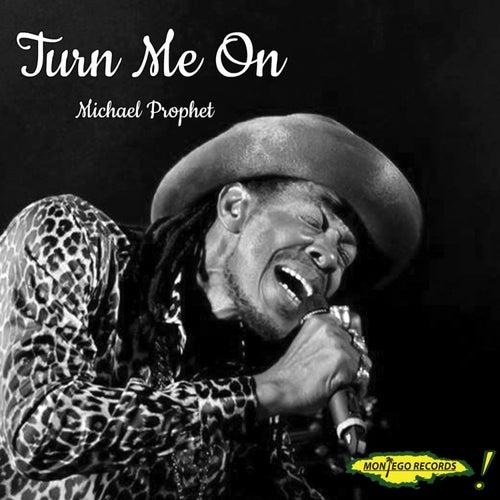 Turn Me On by Michael Prophet