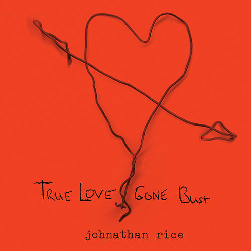 True Love Gone Bust by Various Artists