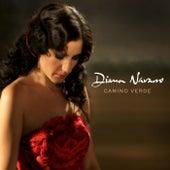 Camino verde by Diana Navarro
