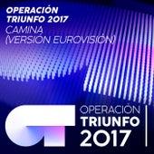 Camina (Versión Eurovisión / Operación Triunfo 2017) by Operación Triunfo 2017