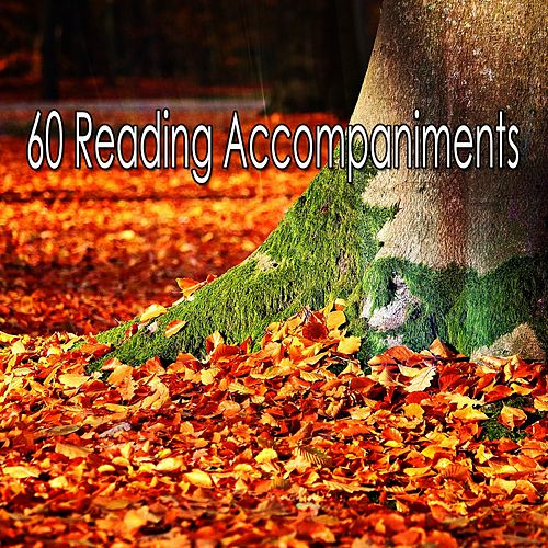60 Reading Accompaniments de Classical Study Music (1)