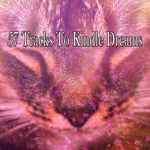 57 Tracks To Kindle Dreams by Rockabye Lullaby