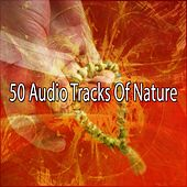 50 Audio Tracks Of Nature von Entspannungsmusik