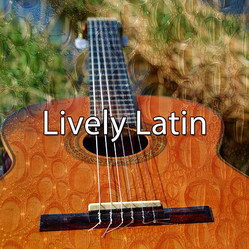Lively Latin by Gypsy Flamenco Masters