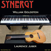 Synergy (Recorded Live in Concert) by Laurence Juber