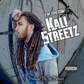 The Step Child by Kali Streetz