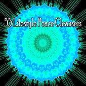 55 Lifestyle Peace Cleansers by Asian Traditional Music