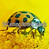 59 Calming Homely Sounds by Zen Music Garden
