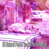 53 Natural Peace Tracks For Sleeping by Ocean Sounds Collection (1)