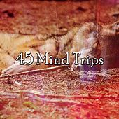 45 Mind Trips by S.P.A