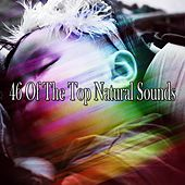 46 Of The Top Natural Sounds by Baby Sleep Sleep