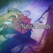 49 Of Just Natural Sounds de Sounds Of Nature