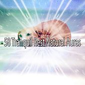 58 Tranquil Rest Natural Auras by Sounds of Nature Relaxation