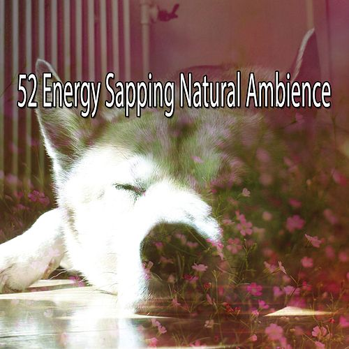 52 Energy Sapping Natural Ambience by Lullaby Land