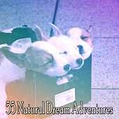 55 Natural Dream Adventures de White Noise Babies