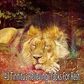 43 Tinnitus Relieving Tracks For Rest by White Noise For Baby Sleep