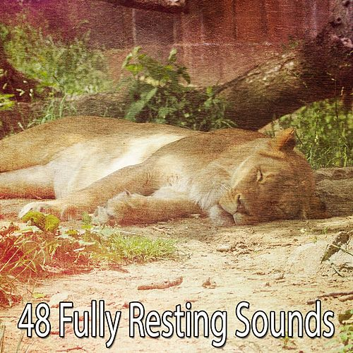 48 Fully Resting Sounds de Relajacion Del Mar