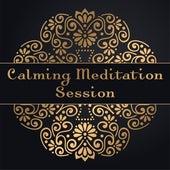 Calming Meditation Session by Reiki