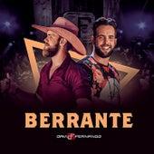 Berrante von Davi & Fernando