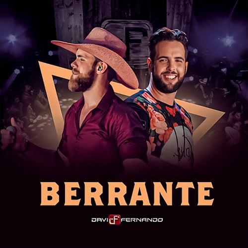 Berrante de Davi & Fernando