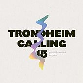 Trondheim Calling 18 by Various Artists