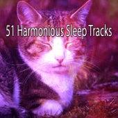 51 Harmonious Sleep Tracks by Deep Sleep Music Academy