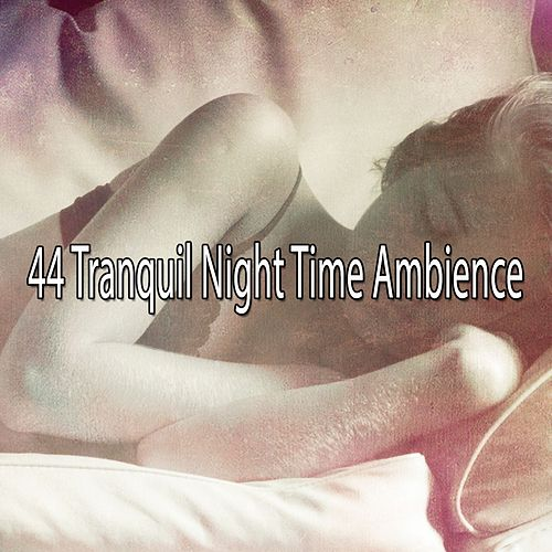 44 Tranquil Night Time Ambience by Nature Sound Series