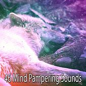 46 Mind Pampering Sounds by Spa Relaxation