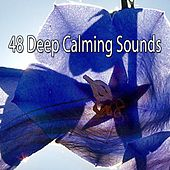 48 Deep Calming Sounds by Smart Baby Lullaby