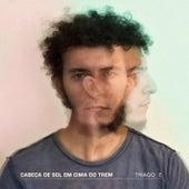 Cabeça de Sol em Cima do Trem by Thiago E