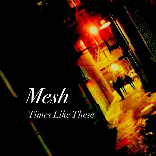 Times Like These by Mesh
