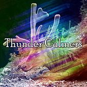 Thunder Calmers by Thunderstorm